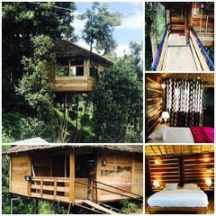 Nainital Homes And Resort in Bhowali Nainital