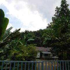 Paithal Homestay in Paithalmala