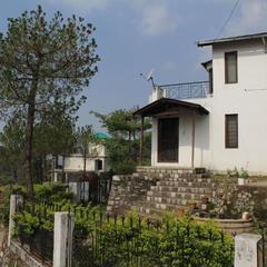 Pine Glade in Bhowali Nainital