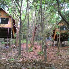 Reginasilva Camping And Eco Resort in Kannur
