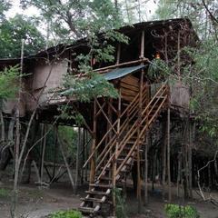 Safari Land Resorts in Masinigudi
