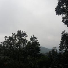 Summer Mist in Meppadi