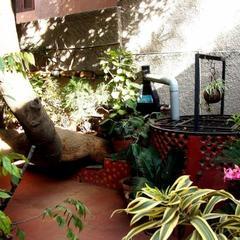Sunshine's Nest in Bengaluru