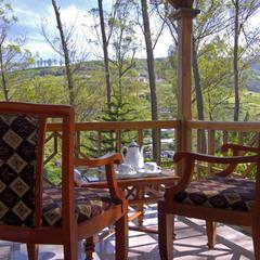 Tea County in Munnar