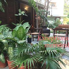 The Boutique Guest House- Utelia House No.9 in Ahmedabad