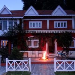 The Wilderness in Shimla