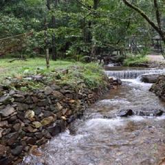 Western Ghat naturestay in Sakleshpur