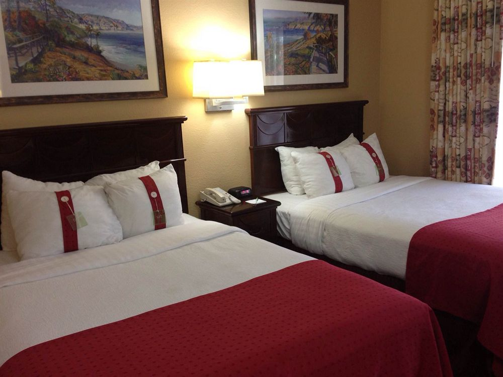 Holiday Inn Hotel & Suites near Busch Gardens-USF