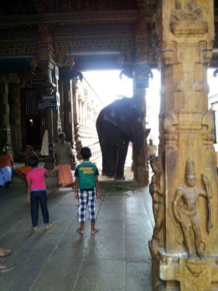 Badrakaliamman Temple