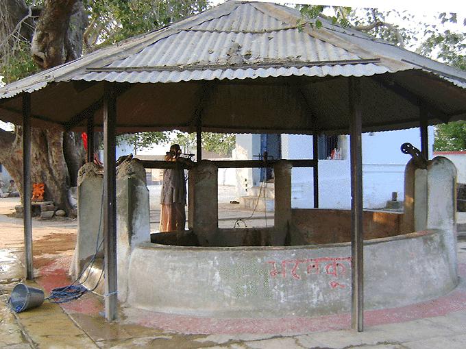 Bharat Koop