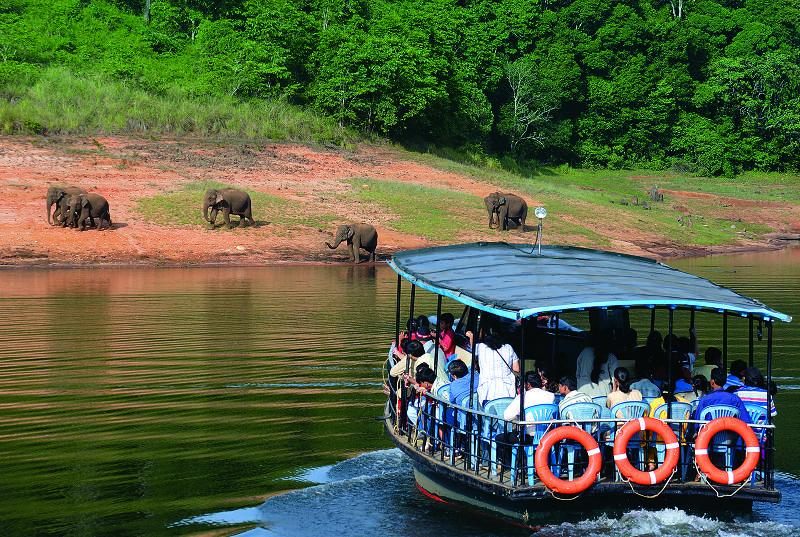 Boating and Wildlife Sighting at Periyar Lake