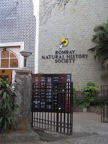 Bombay Natural History Society Museum