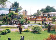 Children Amusement Green Park