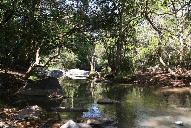 Explore Kuruvadweep island