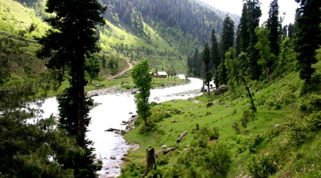 Ferozepur Nallah