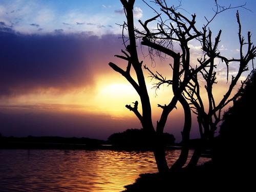 Gandhinagar Lake