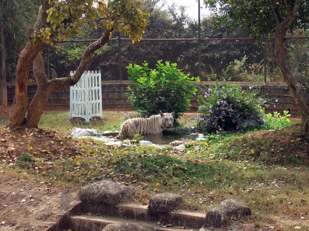 Gautam Budh Park