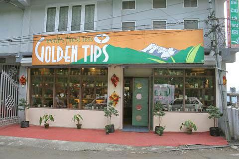 Golden Tips Showroom