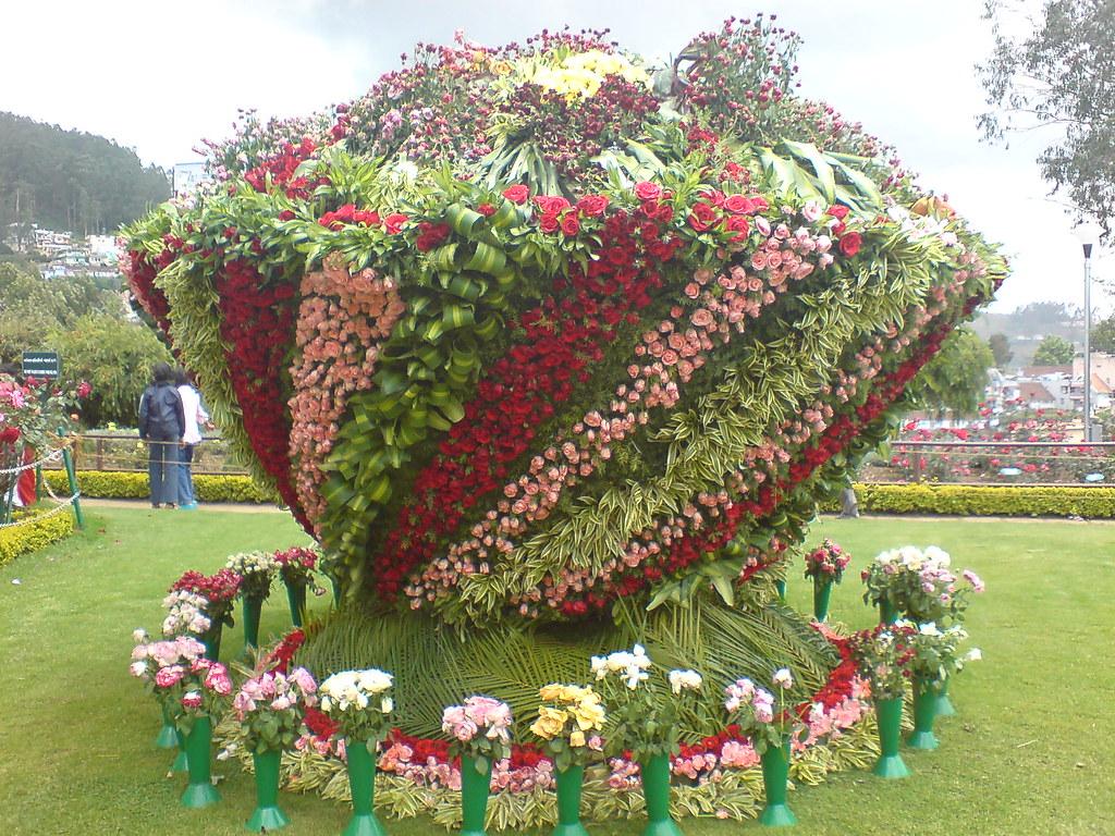 Government Rose Gardens