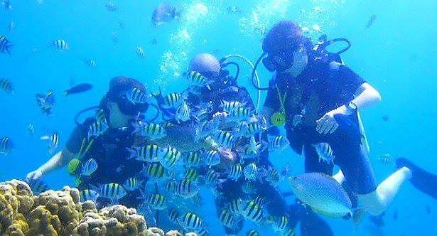 Infinity Ocean Diving