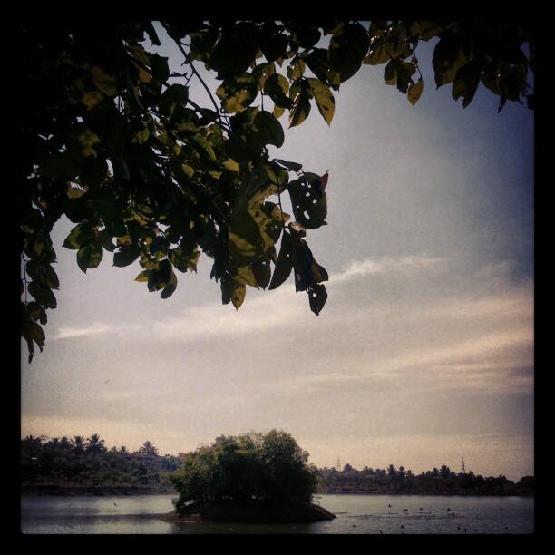 Manipal Lake