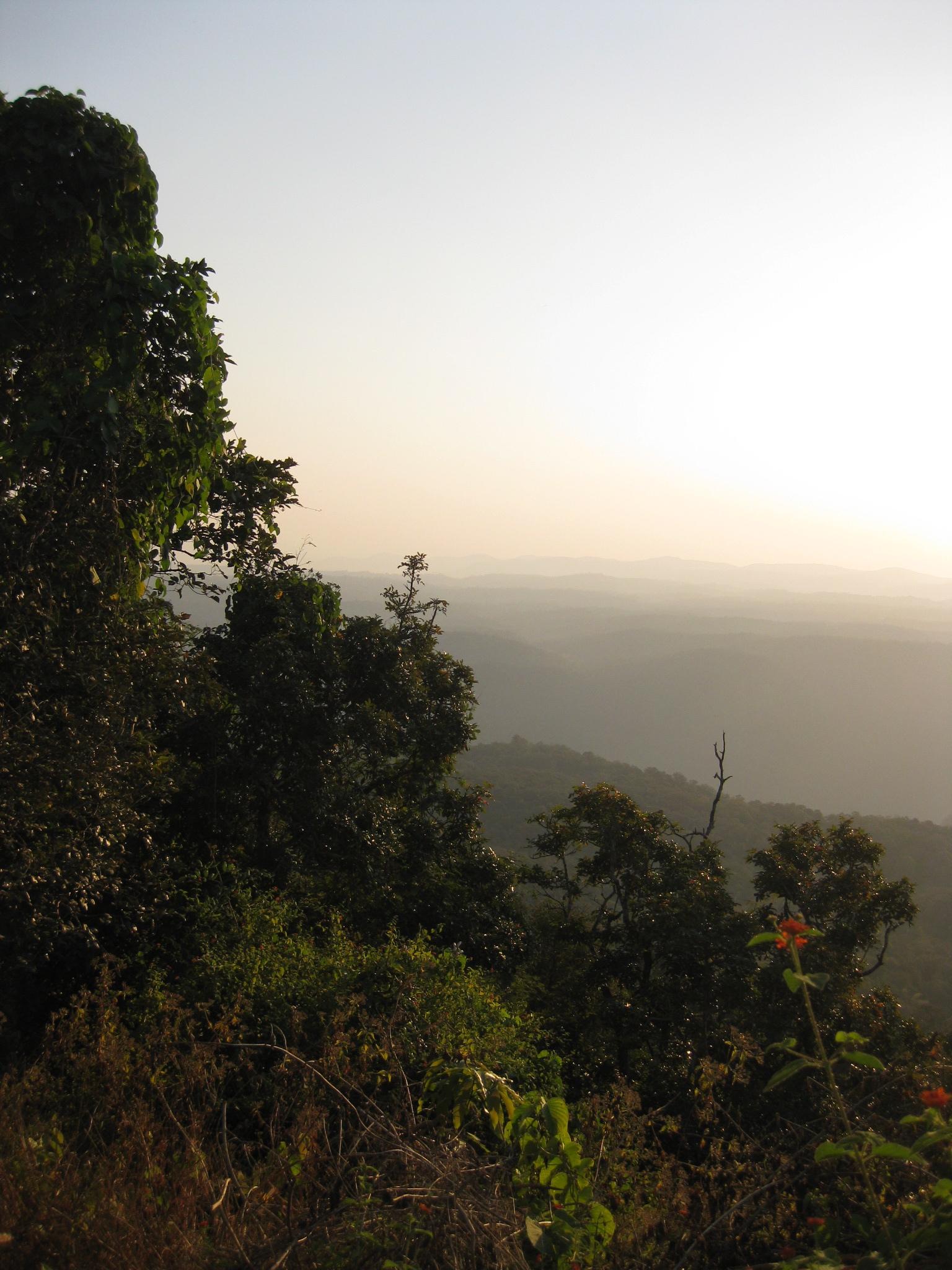 Nrupatunga Hill