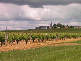 Paris Wine Day Tours