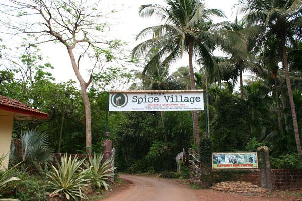 Pascoal Spice Village