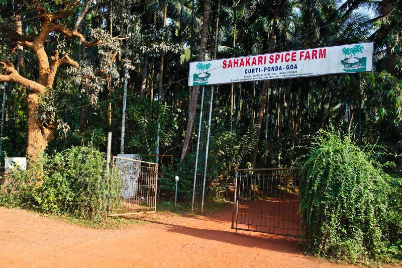 Shahakari Spice Farms