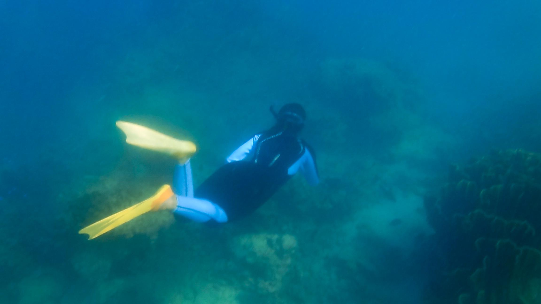 Snorkeling at Bat Island