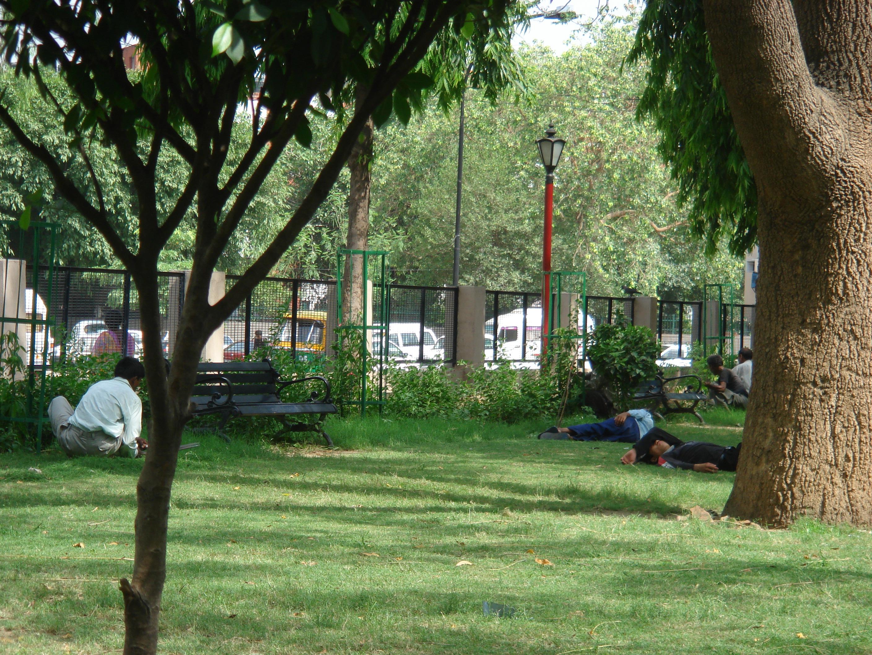 Srinagesh Garden