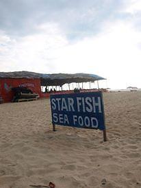 Starfish Beach Shack