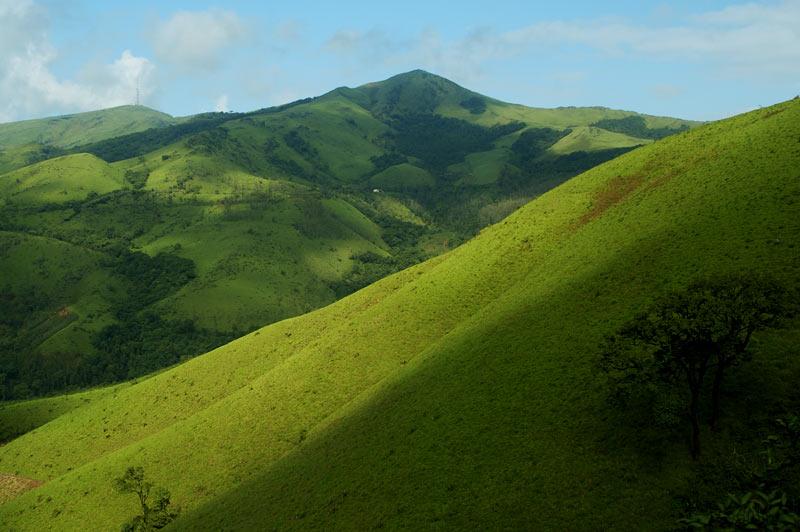 Trekking in Chikmagalur