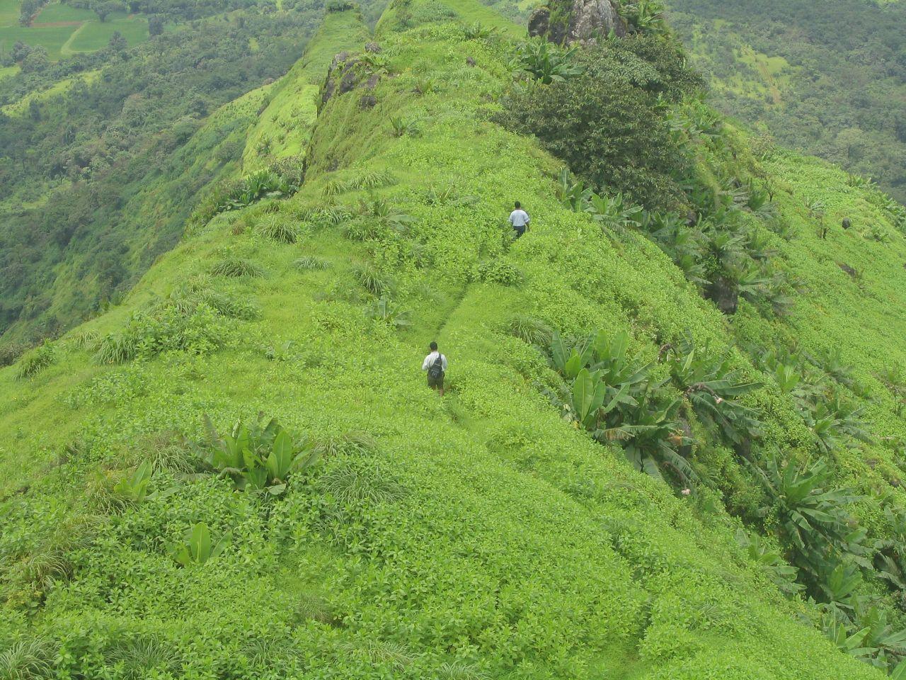Trekking in Kamshet