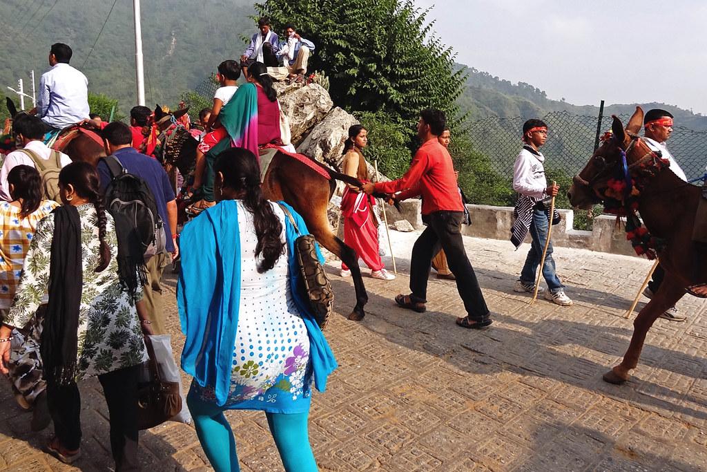 Trekking in Katra