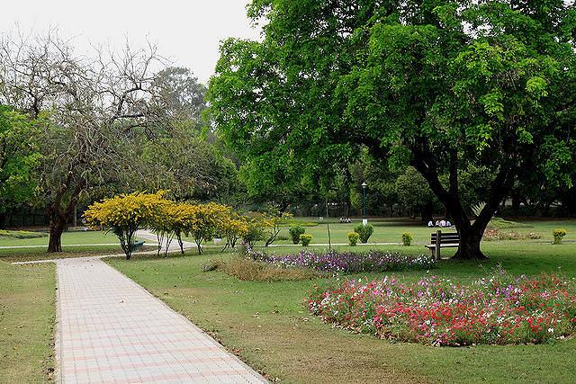 17 Nature Wildlife In Chandigarh Nature Wildlife Tour Of Chandigarh