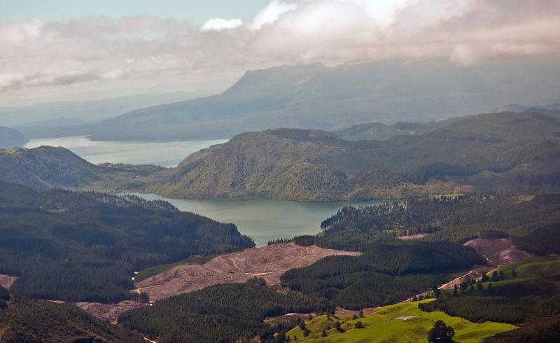 Auckland to Rotorua flights