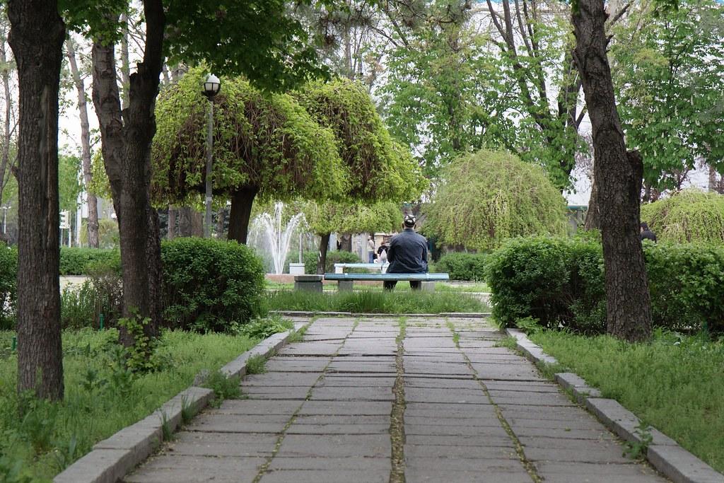 Yerevan to Tashkent flights