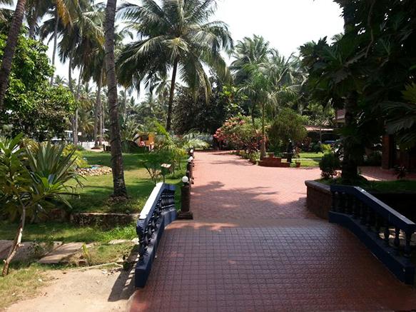 Palm Resort in Goa