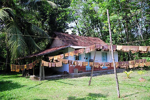 Kodianthara Heritage Home in Kottayam