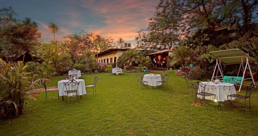 Hill N You - A Garden Resort in Mount Abu