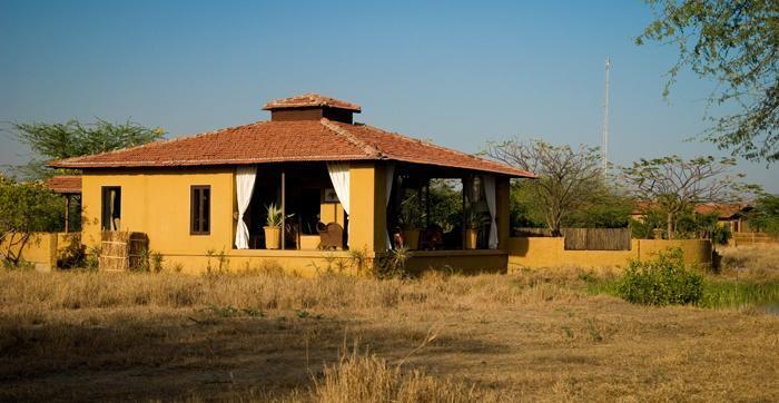 The Blackbuck Lodge in Bhavnagar