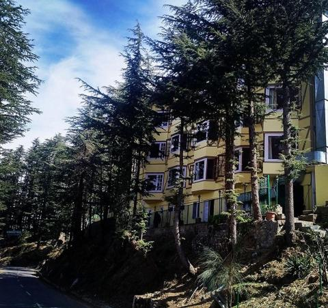 The Woodstock Resort in Shimla