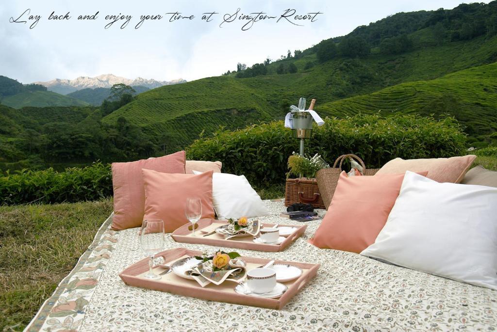 Singtom Tea Estate & Resort in Darjeeling