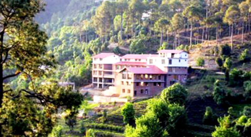 The Buransh, Kausani in Kausani