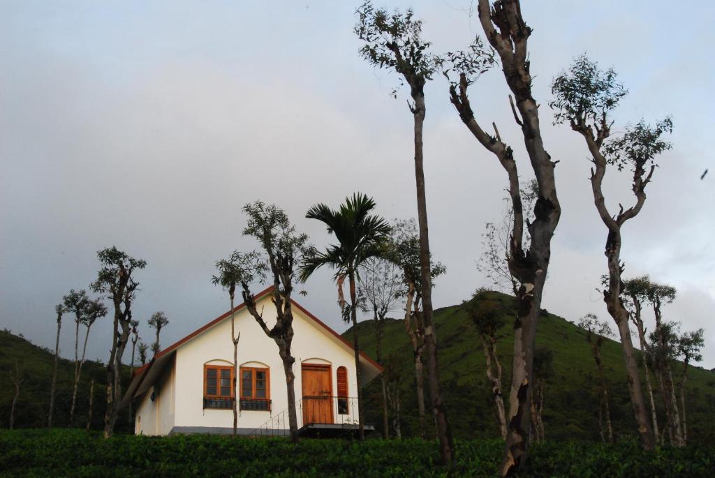 Tea Terrace Vythiri in Wayanad