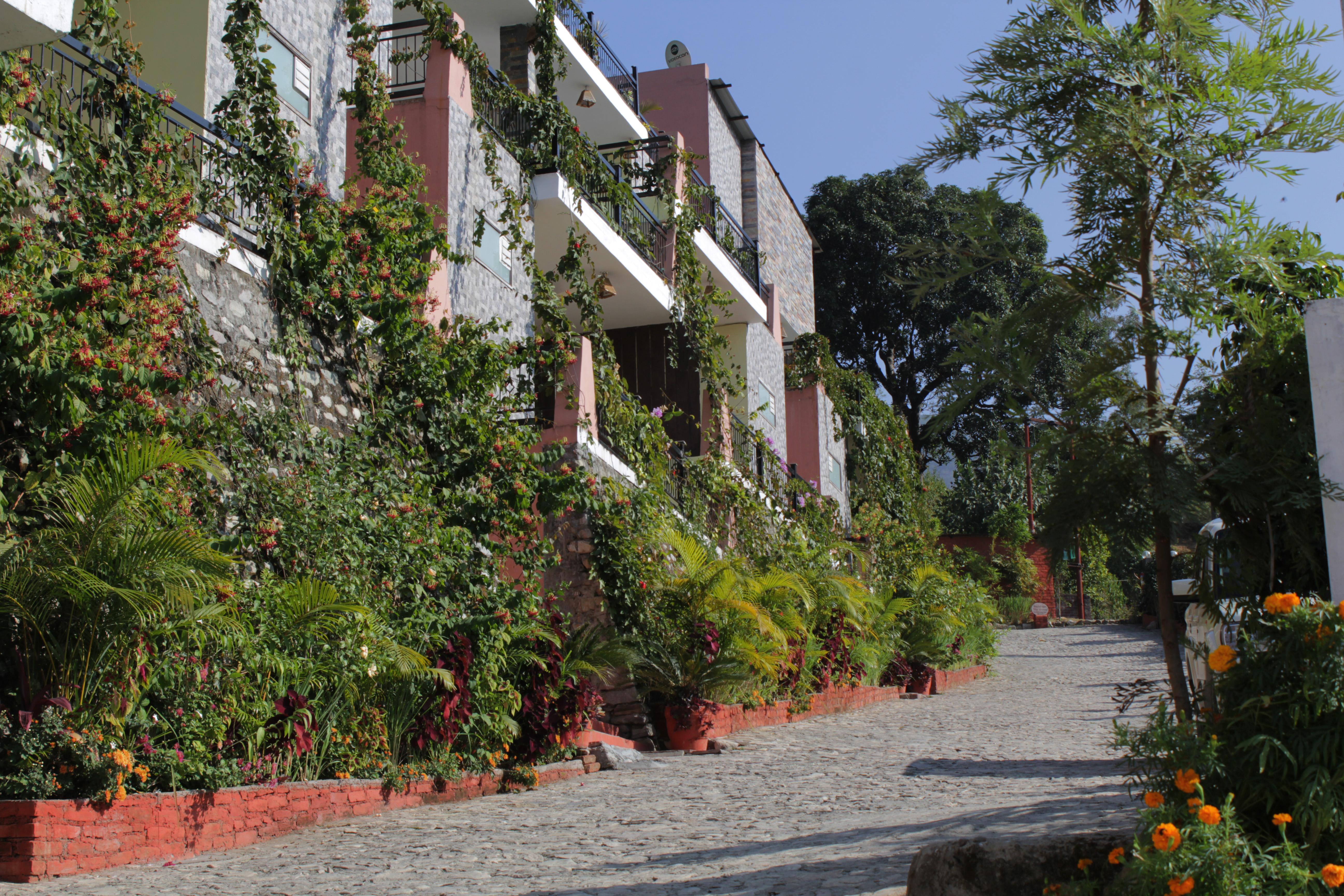 Indus Resort Saalvan Corbett in Corbett
