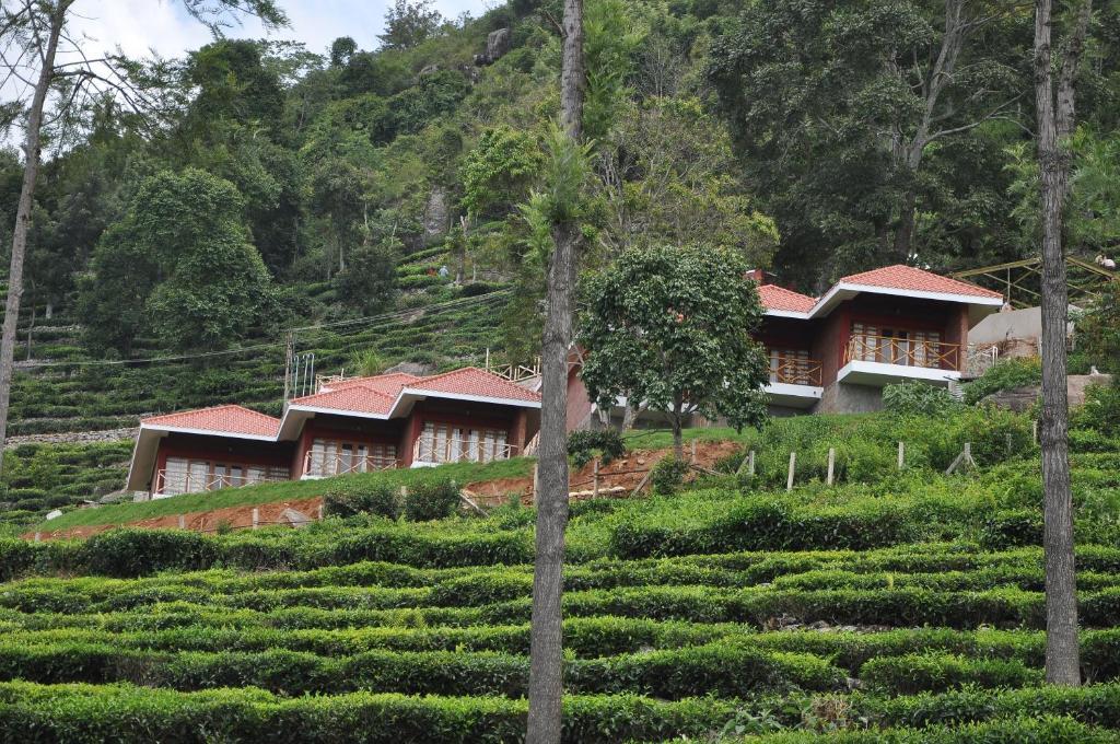 Hanging Huts Resorts in Kotagiri