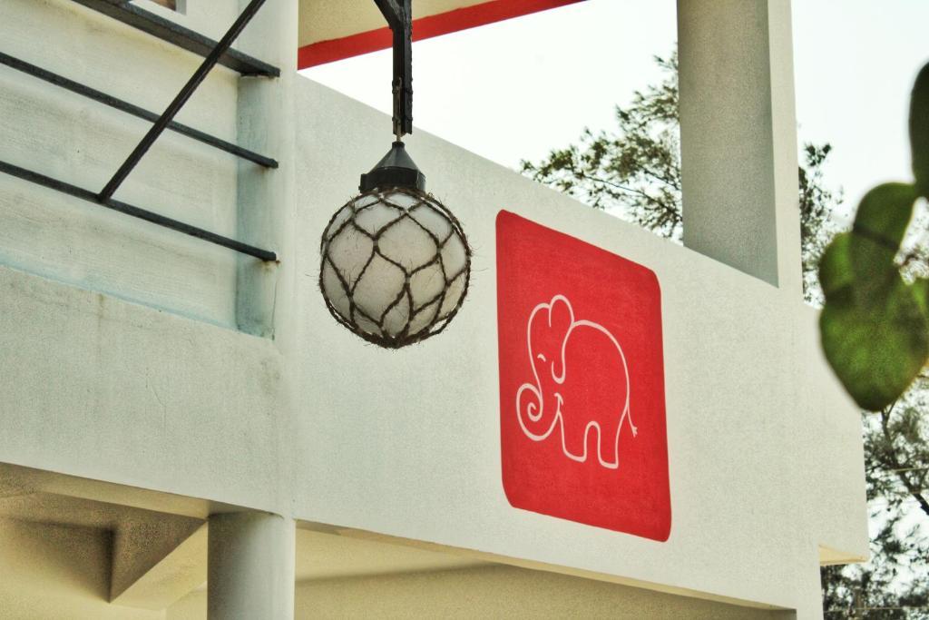 Petit Elephant in Pallipuram