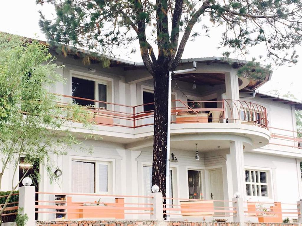The Pine Villa in Mukteshwar Nainital